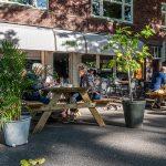 zomer – Wijk Benoordenhout , Den Haag – 26-07-2020