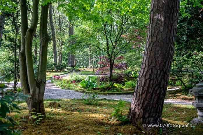 Japanse tuin in Clingendael